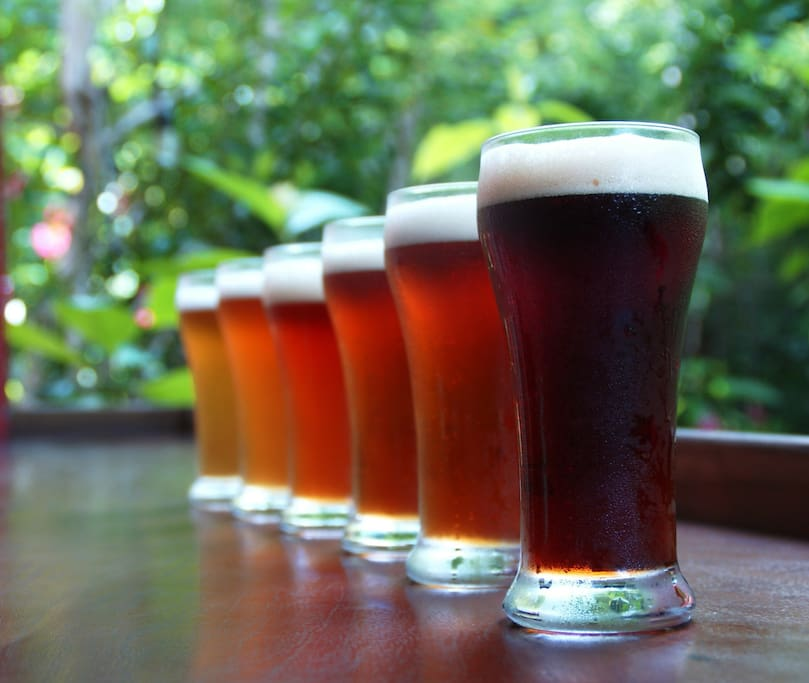 Butterfly Brewing Co. features 6 craft beers to choose from on tap in the restaurant!