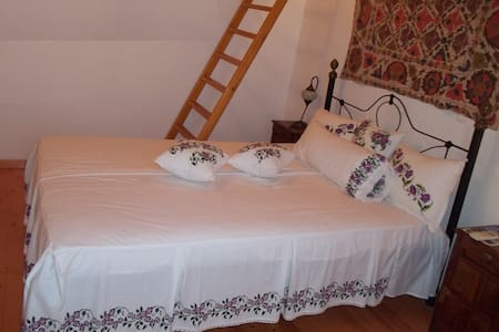 In the nature-Ikaria 4p.with loft.1 - Apartamento
