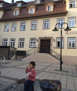 1 Zi. Apartm. nahe Reutlingen Metzingen Tübingen - Apartment