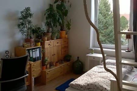 Tolles Zimmer in knorker WG nahe der Innenstadt - Wohnung
