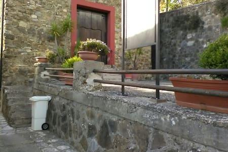 Casa x vacanza mare e monti - Torchiara - House