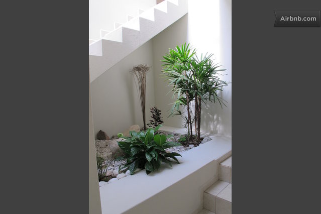 C modas habitaciones independientes in san luis potosi - Jardineras para interiores ...