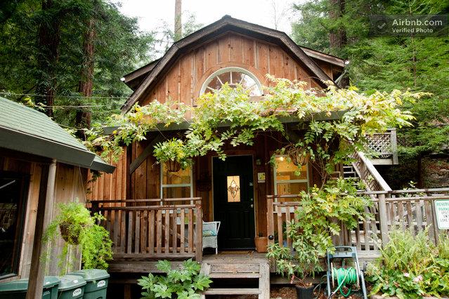Quiet Cabin In The Redwoods In Santa Cruz
