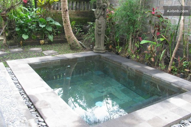 Private tranquil pool villa in ubud for Plunge pool