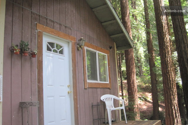 Bio Chic Cabin in the Redwoods in Watsonville