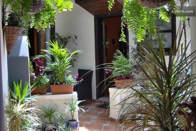 Appartement avec patio terrasse icod de los vinos for Appartement avec patio